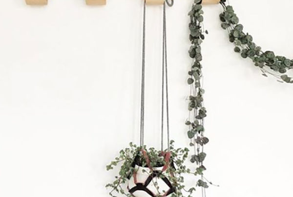 Third Anniversary Gift Ideas Leather Plant Hanger